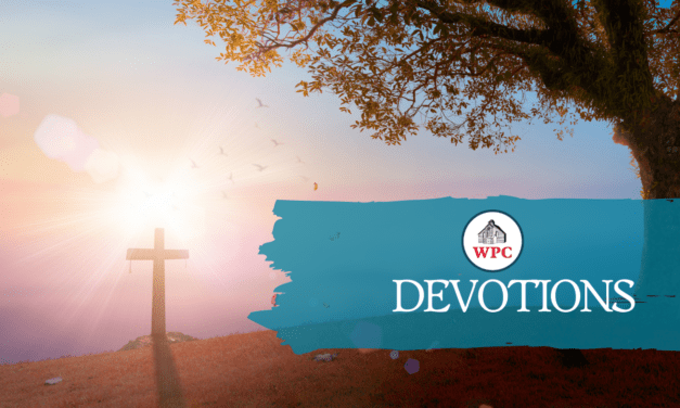 Devotions 11/2 to 11/8